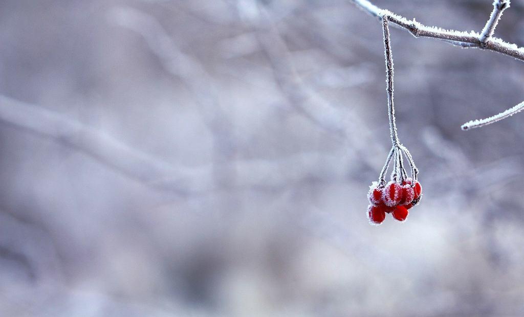 Zima nie odpuszcza, od czwartku ochłodzenie