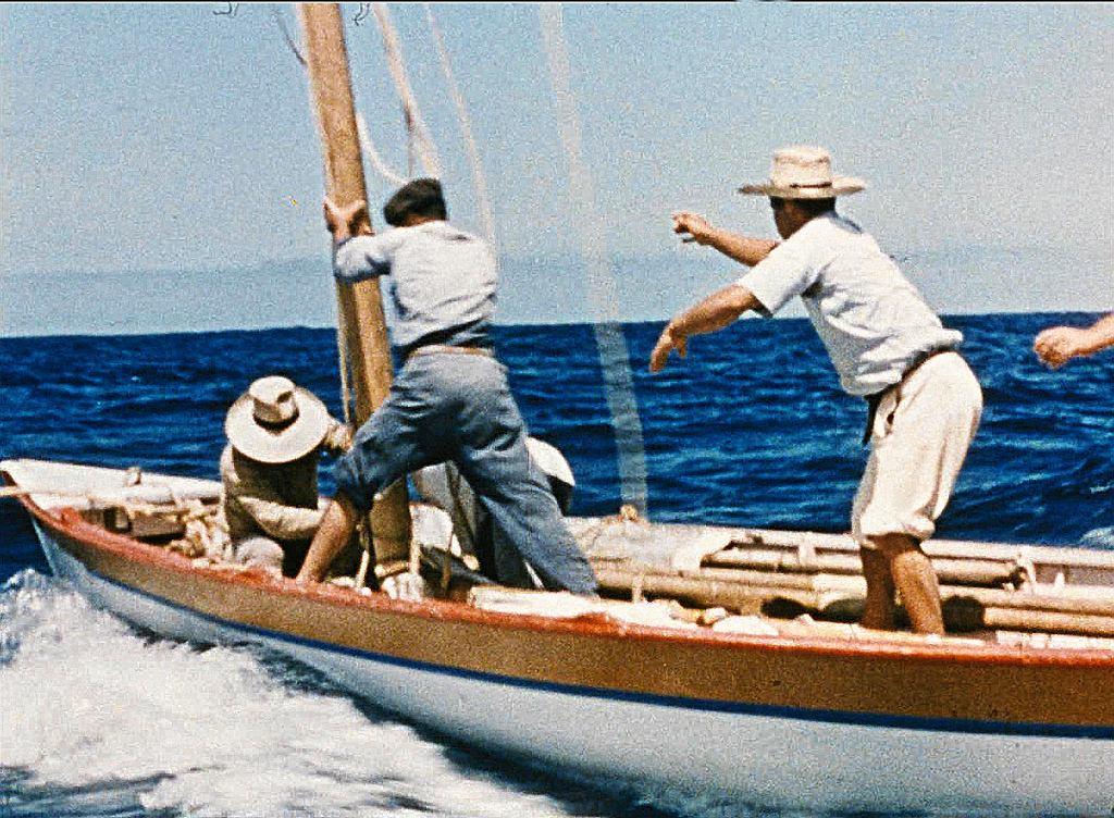 Kadr z filmu ' Vive la baleine' /