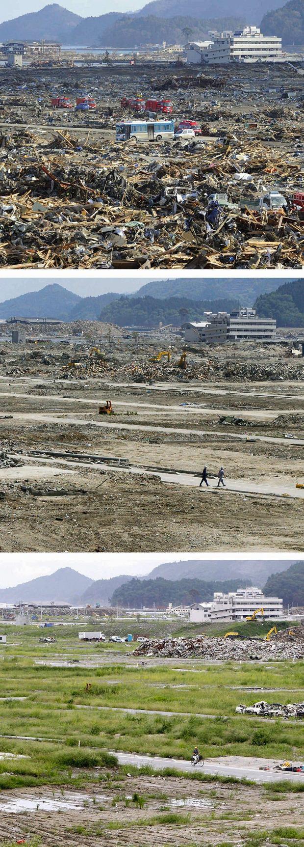 Krajobraz po tsunami ożywał: styczeń, czerwiec i wrzesień 2011
