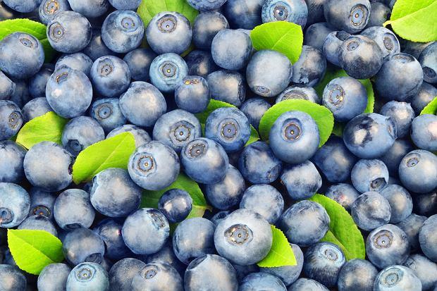 Jagody - dlaczego warto ją jeść i jaki ma wpływ na zdrowie?