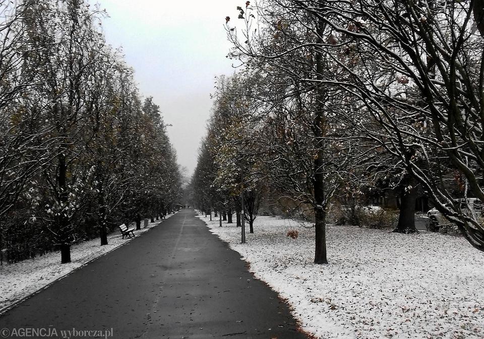 Pogoda We Wrocławiu Prognoza Na Następne Dni
