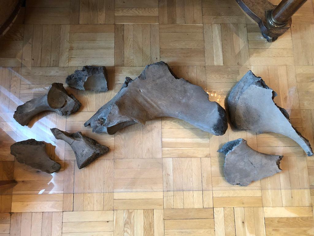 Kości znalezione na budowie II linii metra