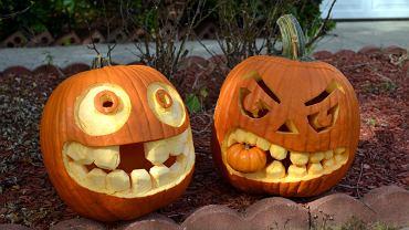 Dynia na Halloween: jak przygotować oryginalną ozdobę na Halloween? Zdjęcie ilustracyjne