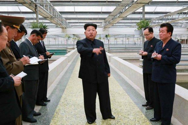 Kim Dzong Un na farmie żółwi