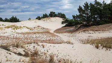 Dzikie miejsca w Polsce