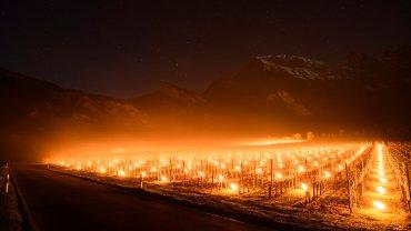 Świece w szwajcarskiej winnicy