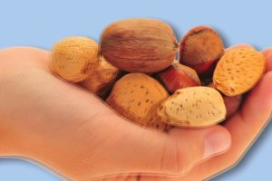 Włoskie, laskowe, brazylijskie... Dlaczego warto jeść orzechy?