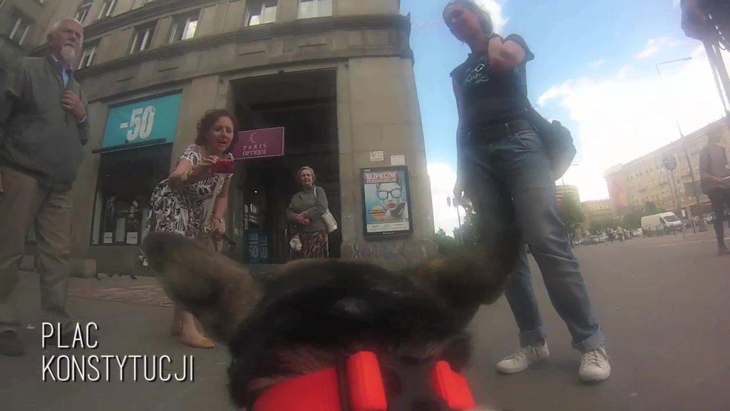 Essie spaceruje po Warszawie z kamerą GoPro