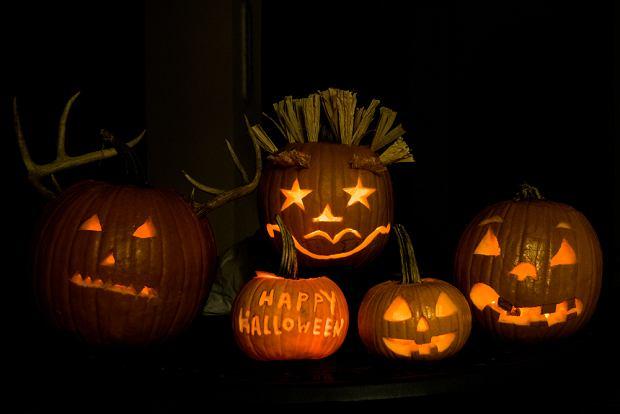 Wycinanie dyni na Halloween- proste pomysły na naturalny lampion