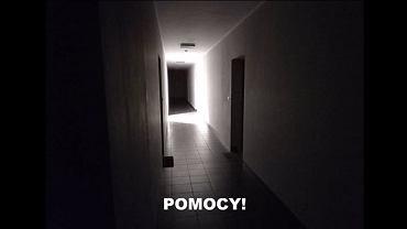 'Wyborcza' publikuje nagrania z interwencji wrocławskiej policji