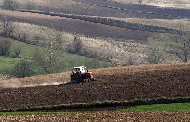 Czystka w ARiMR opóźnia wypłatę unijnych pieniędzy. Bieda rolnika