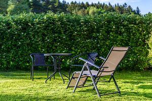 Leżak czy hamak? - miejsca na letni odpoczynek