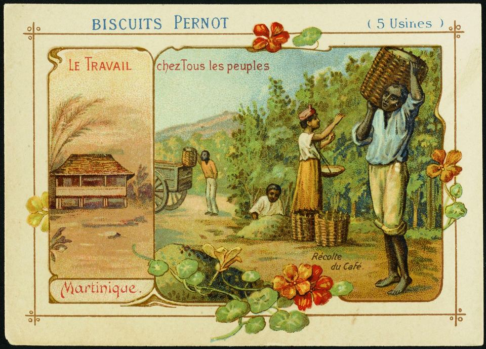 Zdjęcie numer 2 w galerii - Wielka mała czarna, czyli historia kawy