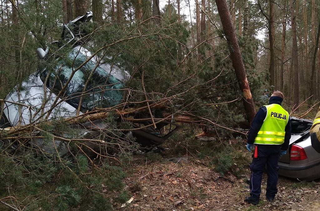 Drożdżak. Kierowca wypadł z drogi, 'karoseria nie wytrzymała'. 'To cud, że przeżył'