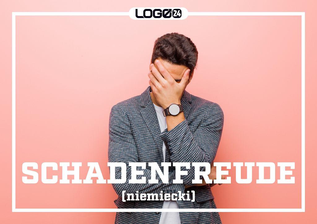 Schadenfreude (niemiecki) - przyjemność czerpaną z cudzego nieszczęścia bądź niepowodzenia.