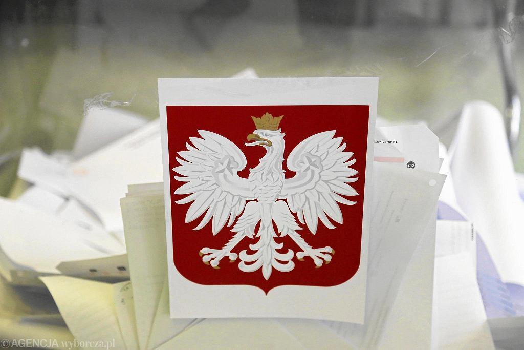 Eurowybory 2019. Urna wyborcza