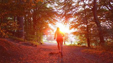 dlaczego warto biegać jesienią?
