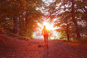 Dlaczego warto zacząć biegać jesienią? Oto powody, by przekonać się do takiej formy aktywności