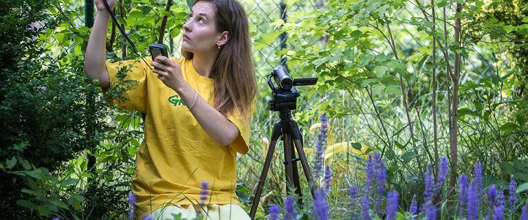 Adoptuj Pszczołę edycja ósma. Najfajniejsza akcja crowdfundingowa rusza! Dołącz i ratuj owady zapylające