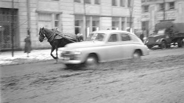 Koń na Marszałkowskiej