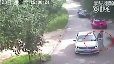 Atak tygrysa w chińskim zoo