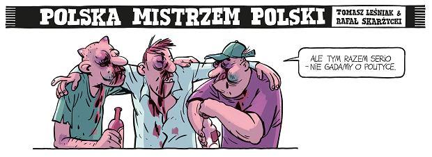 Zdjęcie numer 13 w galerii - Polska mistrzem Polski