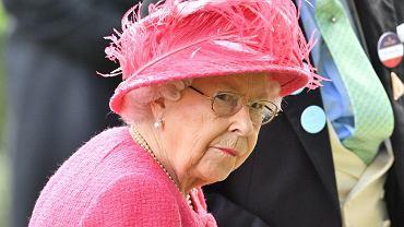 Elżbieta II planuje abdykację? W kolejce do tronu jest książę Karol, ale królowa ma inny plan