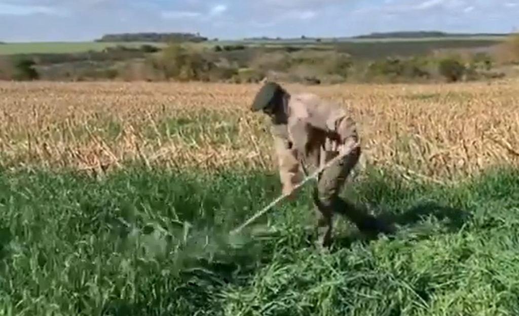 Napastnik PSG, Edinson Cavani pracuje w polu