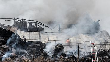 Pożar nielegalnego wysypiska śmieci przy ul. Szczecińskiej we Wrocławiu