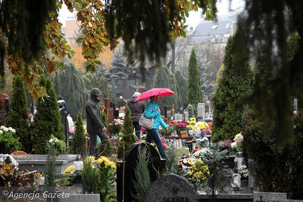 Zdjęcie numer 33 w galerii - Wszystkich Świętych we Wrocławiu. Cmentarze w kwiatach [ZDJĘCIA]