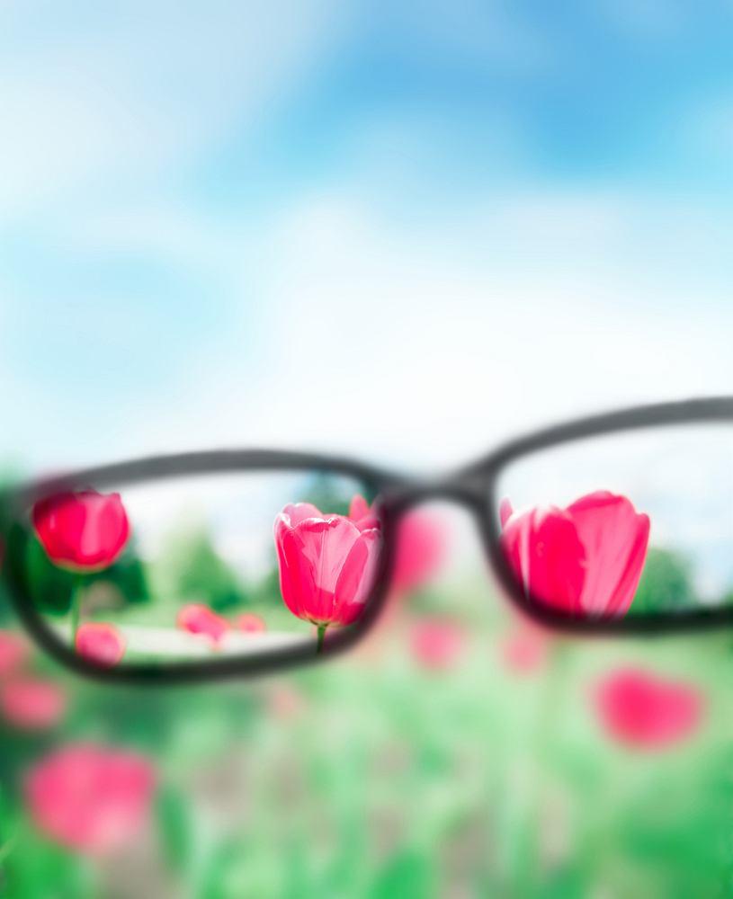 Myopia czyli