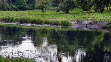Rzeka Gwda (zdjęcie ilustracyjne)