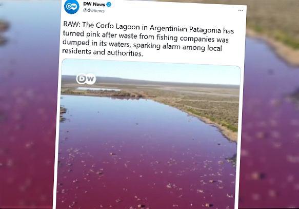 Różowa woda w Argentynie