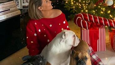 Małgorzata Rozenek znowu chwali się choinką, jednak internauci zwrócili uwagę na imię jej psa.