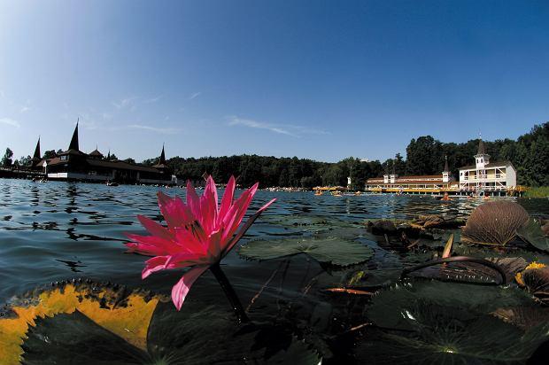 Ci Węgrzy to mają! Heviz - największe jezioro geotermalne świata. Popływasz w ciepłej wodzie nawet jesienią i zimą