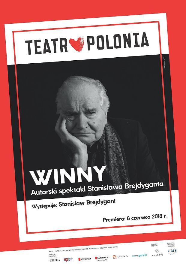 Stanisław Brejdygant, 'Winny'