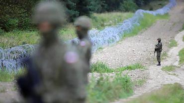 Płot z drutu żyletkowego na granicy Polski i Białorusi