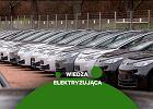 Ile kosztuje samochód elektryczny? Zebraliśmy wszystkie modele dostępne w Polsce - przegląd rynku