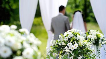 Ślub w plenerze. Zdjęcie ilustrayjne