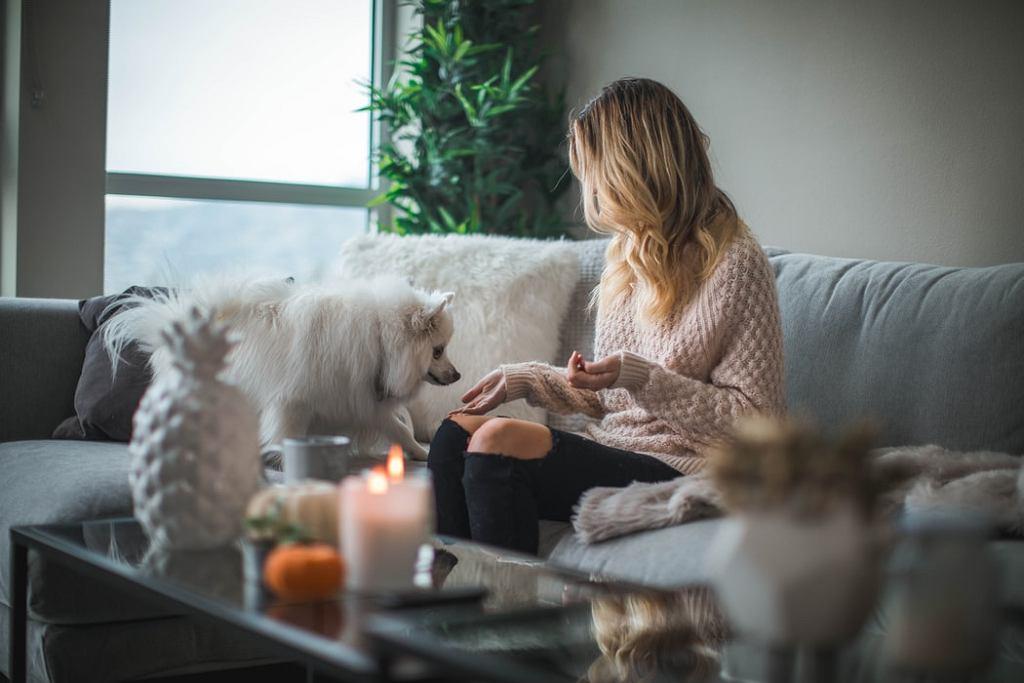 Jak się nie zanudzić spędzając czas w domu? Oto kilka przydatnych pomysłów