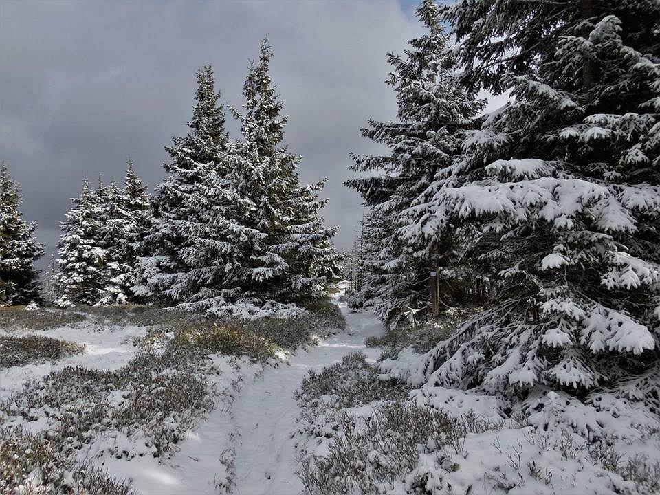 Październikowy śnieg w Karkonoszach