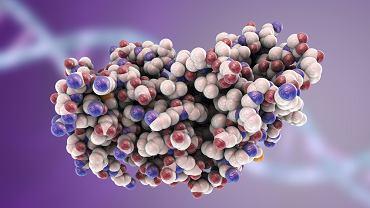 Interferon to lek stosowany przede wszystkim w leczeniu WZW C, czyli wirusowego zapalenia wątroby typu C