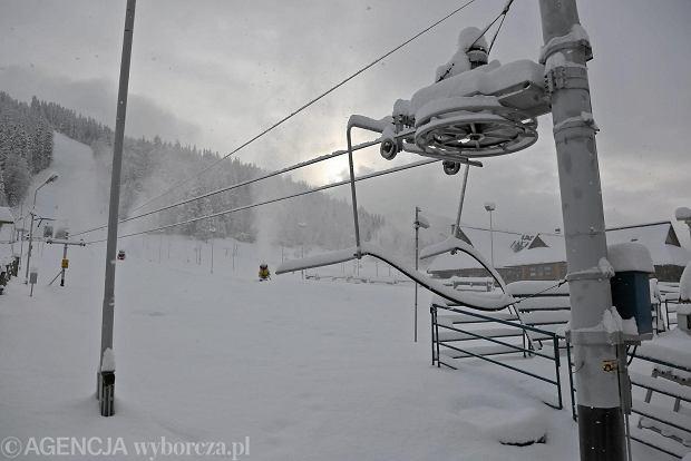 Zdjęcie numer 1 w galerii - Nosal wraca dla sportu alpejskiego