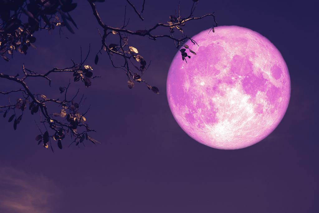 truskawkowy Księżyc 2020