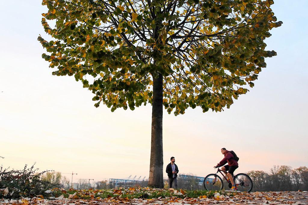 Pogoda długoterminowa na listopad (zdjęcie ilustracyjne)