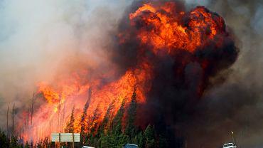 Samochody porzucone przez uciekających przed pożarem