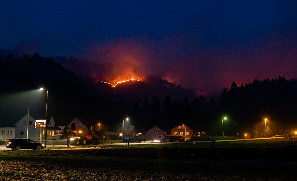 Pożary szaleją w Norwegii od wtorku. Spaliło się już 700 hektarów lasów