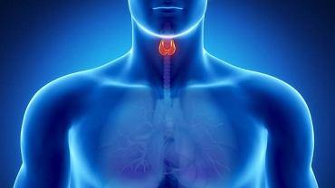 Nadczynność lub niedoczynność tarczycy to dwa najczęściej występujące schorzenia w obrębie tego gruczołu