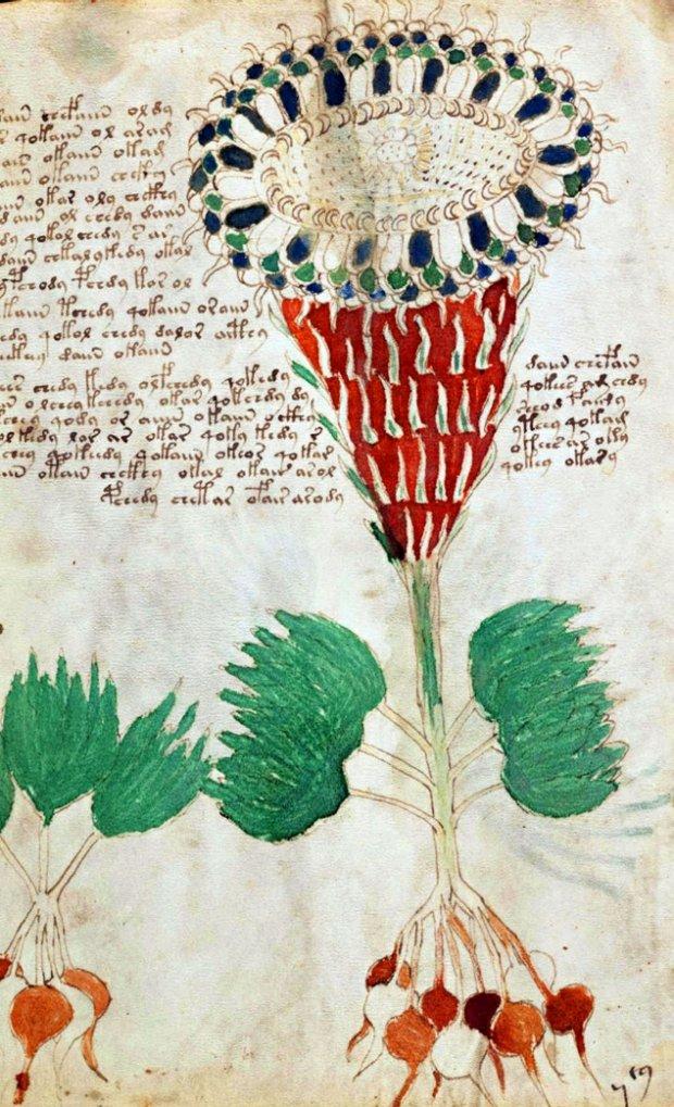 średniowieczny Rękopis Aktualne Wydarzenia Z Kraju I