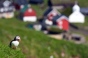 Islandia - kraj na niezapomniane wakacje dla tych, którzy nie lubią upałów
